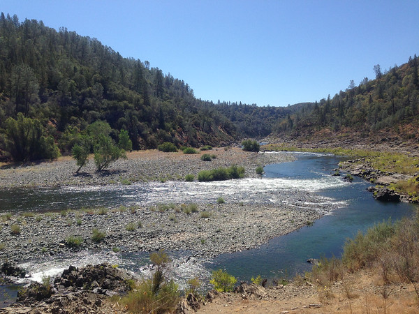 The American river - roaring at many places.